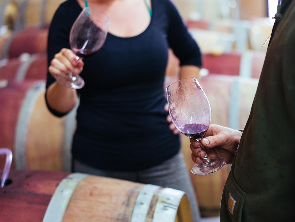 barrel hall Margaret river karridale wine