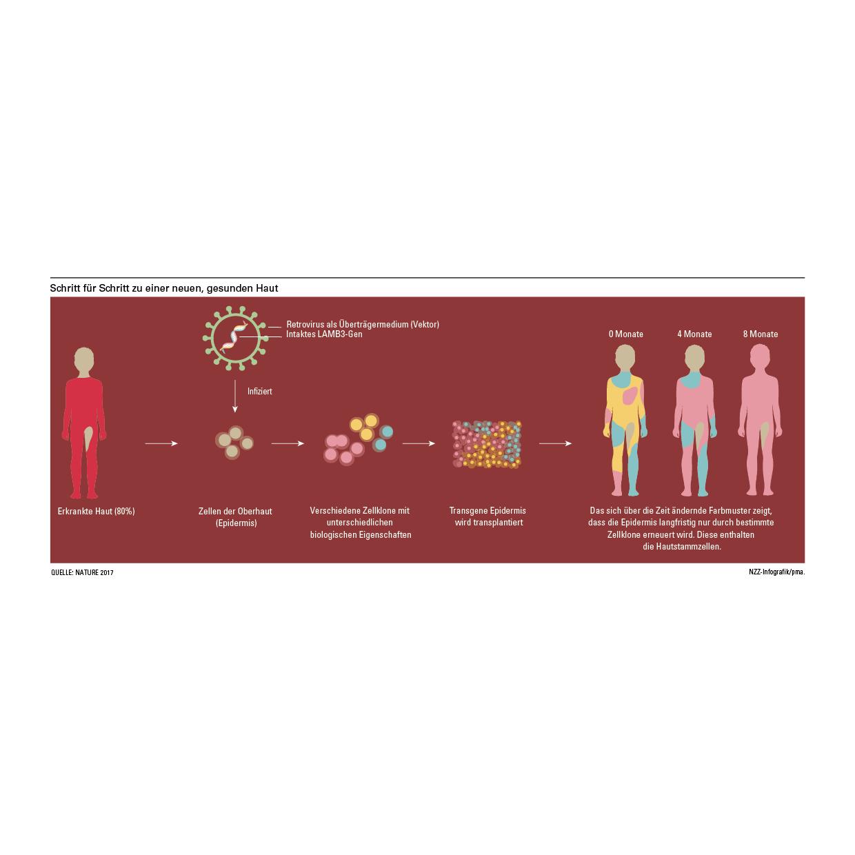 portfolio-infografics-web9.jpg