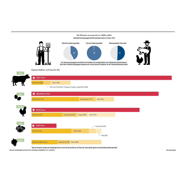 portfolio-infografics-web7.jpg