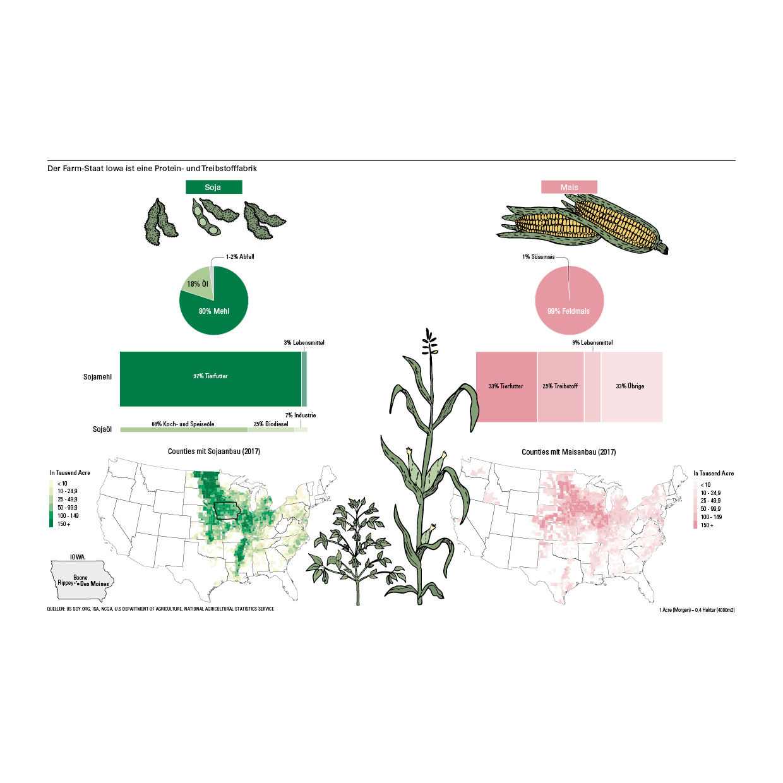 portfolio-infografics-web4.jpg