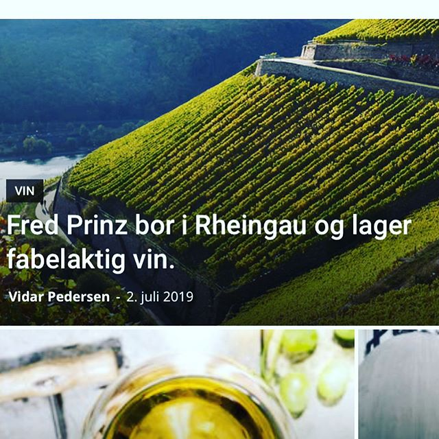 Kinda agree with GodtDrikke.net - Prinz is a darling! Loads of 💥💥 for your 💴💴💵💵 Find full article at godtdrikke.net and a bottle at vinmonopolet.no or in a store near you from september 💚💙💥 @weingutprinz for president! Riesling for summer. And love to the 🌎.