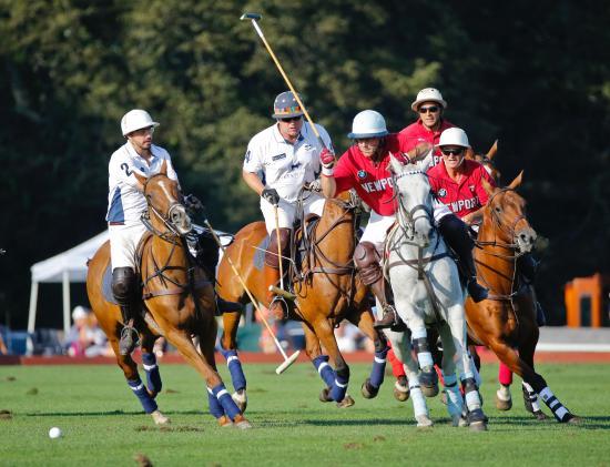 Newport polo Match.jpg
