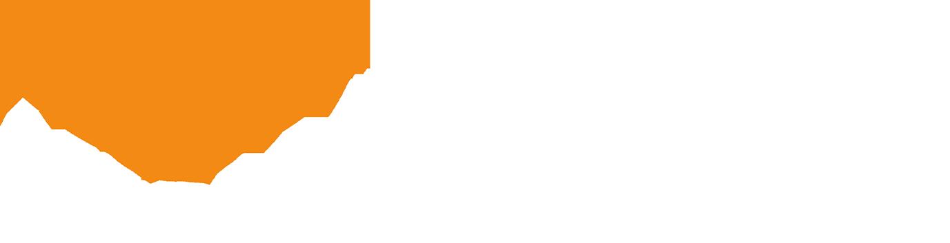 Logo - MESIA White (PNG) 2.png