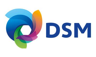 DSM 400x240.jpg