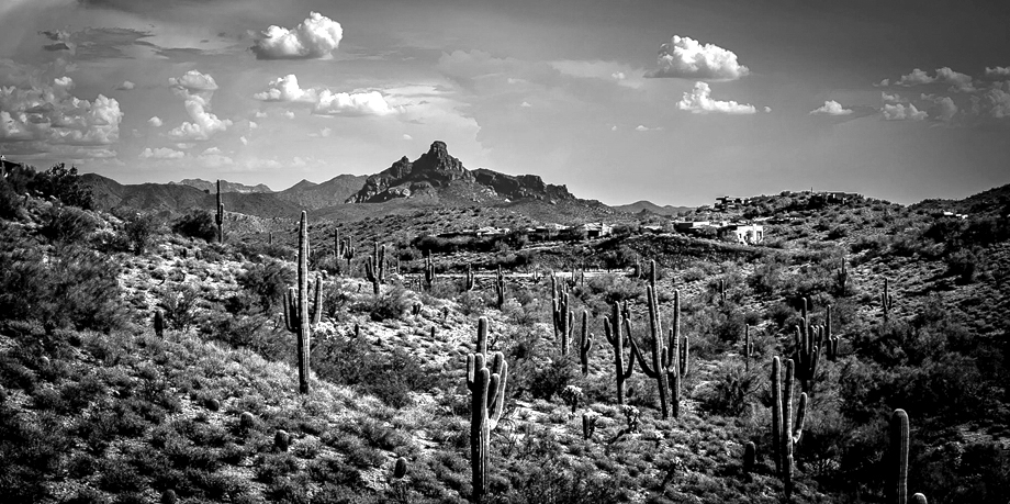 wrap_arizona_event_photography-01144_BW.jpg