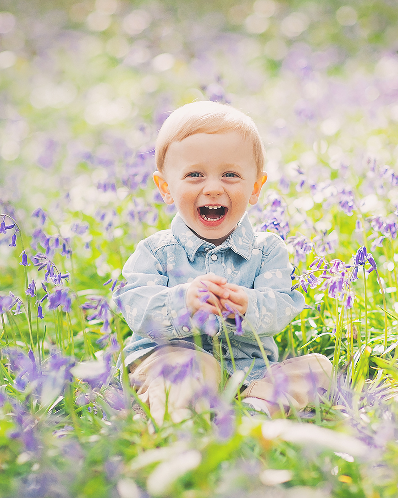 Little Toad Photography child portrait - child sitting in bluebell field for natural light photo shoot outdoors
