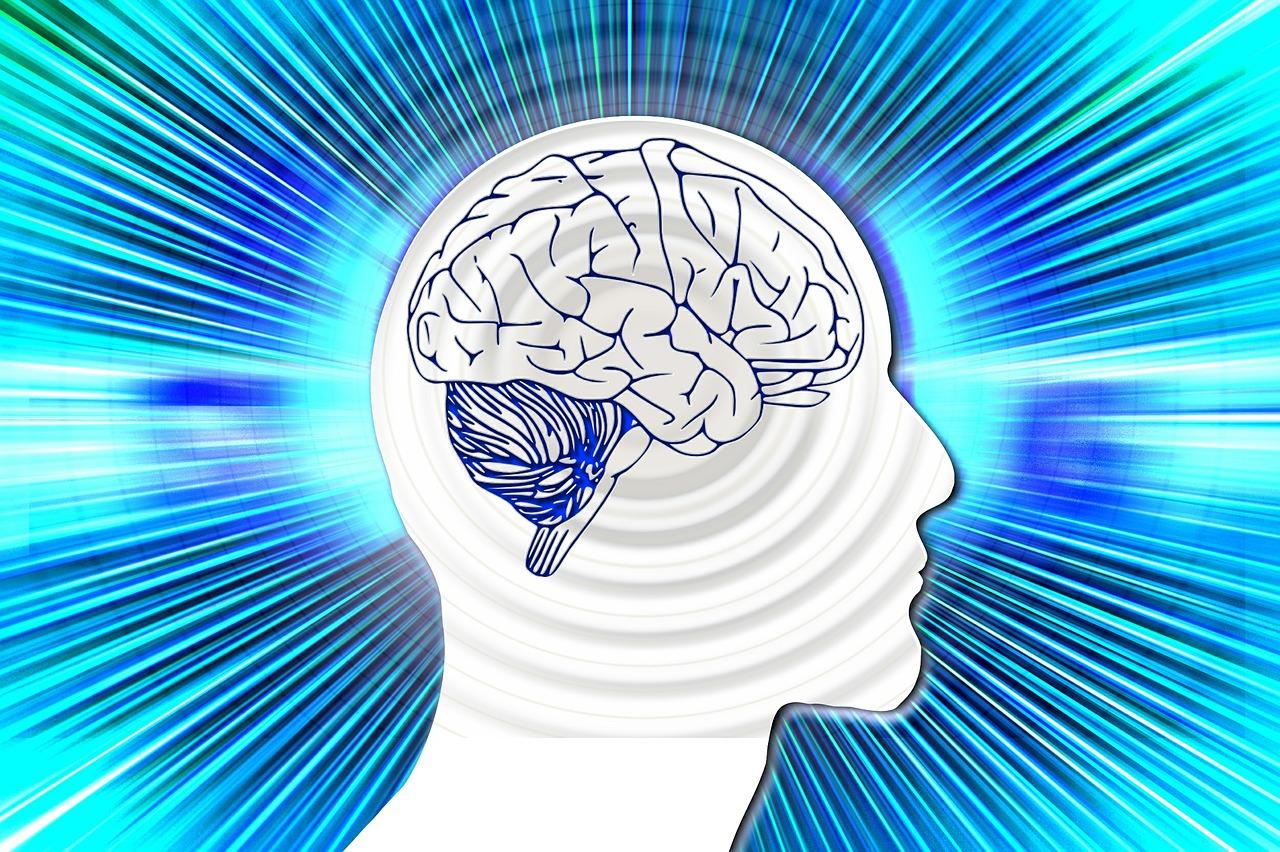 Peak Brain Performance Allentown.jpg