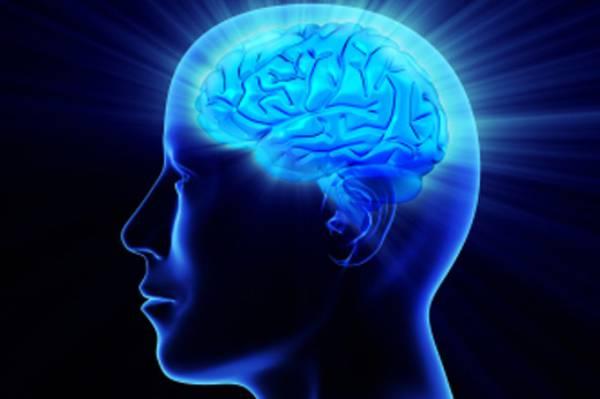Peak Brain Performance Bradley Beach.jpg