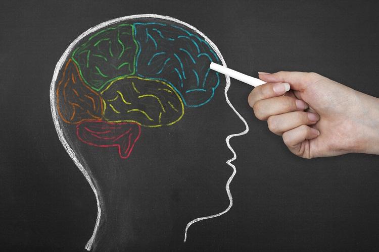 Peak Brain Performance Deal.jpg