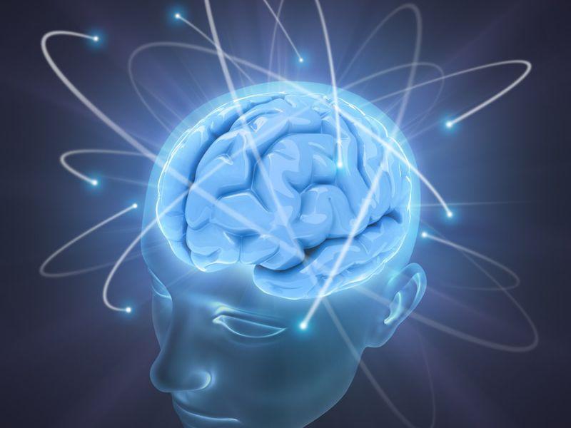 Peak Brain Performance Highlands.jpg