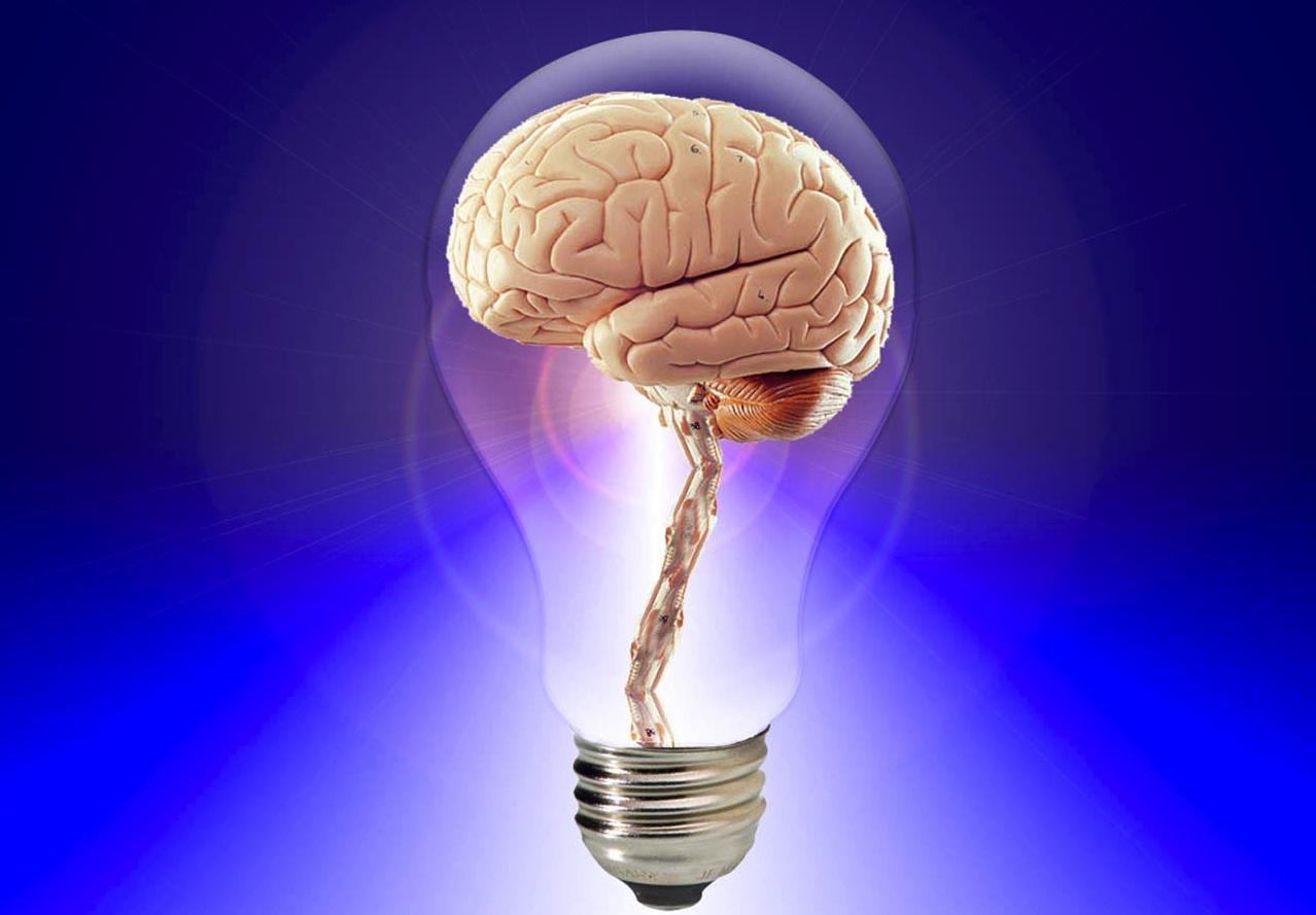 Peak Brain Performance Manasquan.jpg