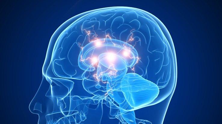 Peak Brain Performance Sea Bright.jpg