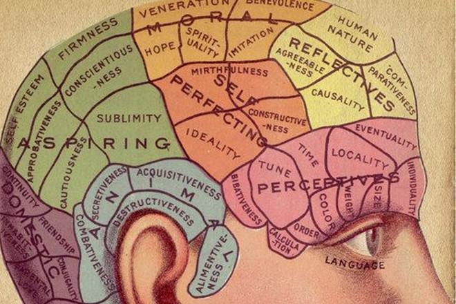 Peak Brain Performance Shrewsbury Township.jpg