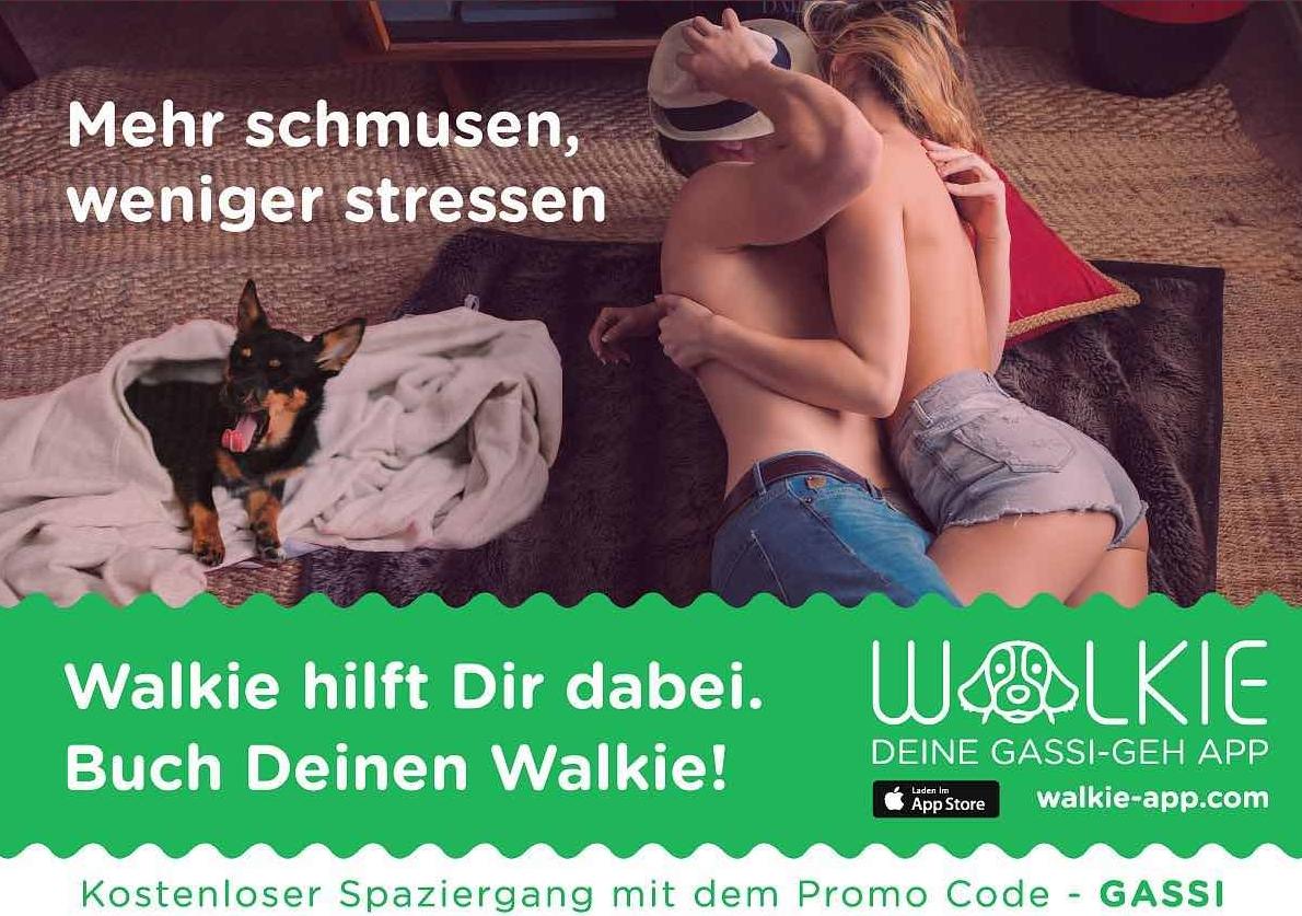 Walkie Schmusen Poster.jpg