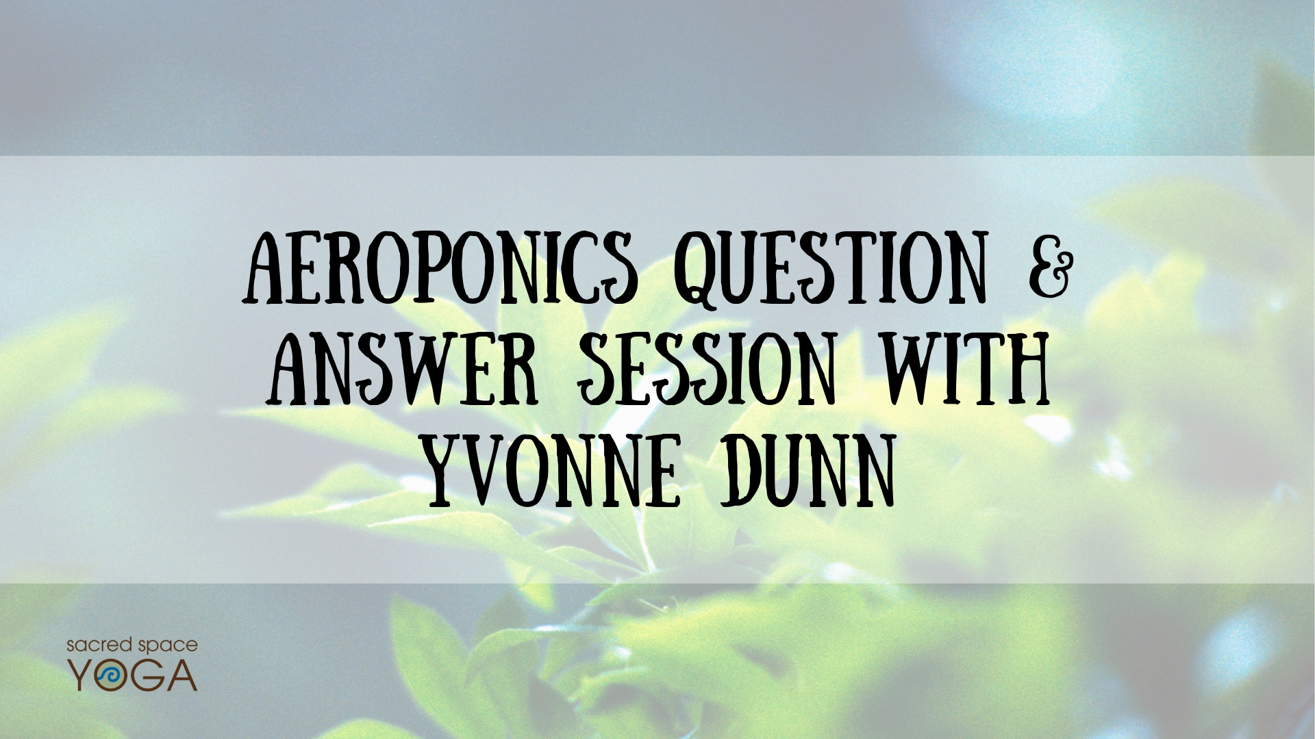 SSY Aeroponics Question & Answer Session With Yvonne Dunn FB Event Cover 9.20.19 .jpg