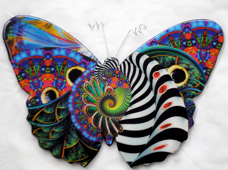 Yubia mariposa 2.jpg