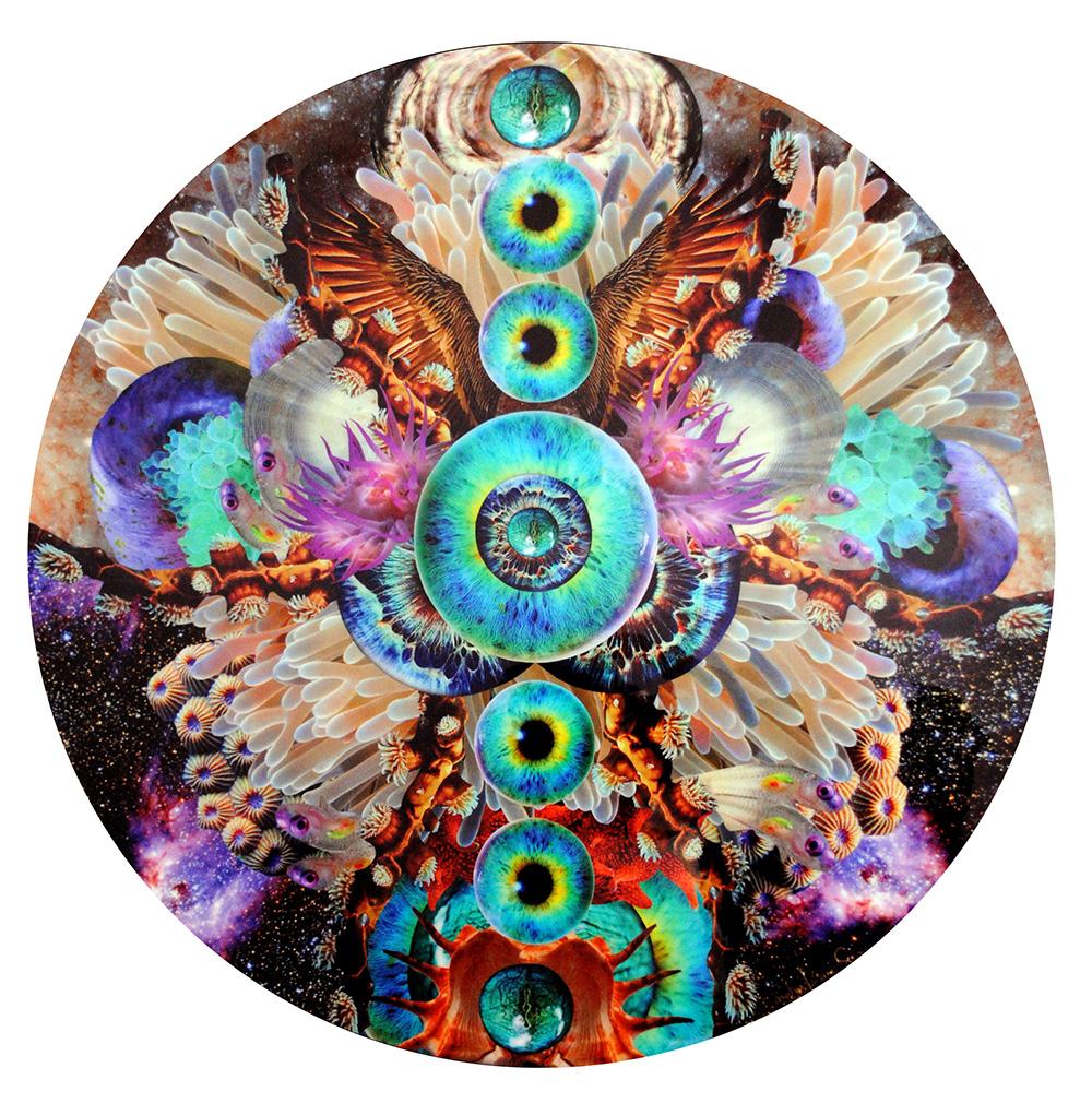 """""""Ser"""". Collage sobre madera encapsulado en resina epóxica. 47"""" diámetro. © Carolina Luciano 2013."""