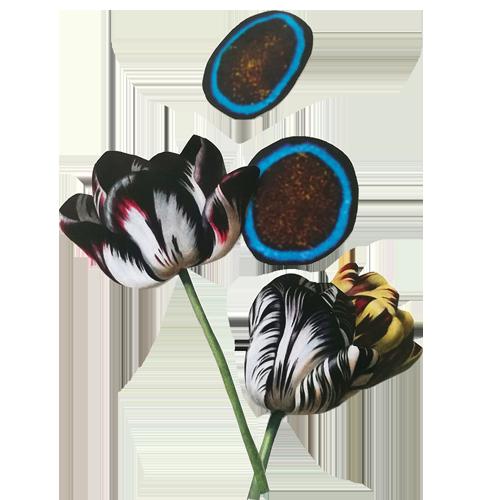 florecitas.png