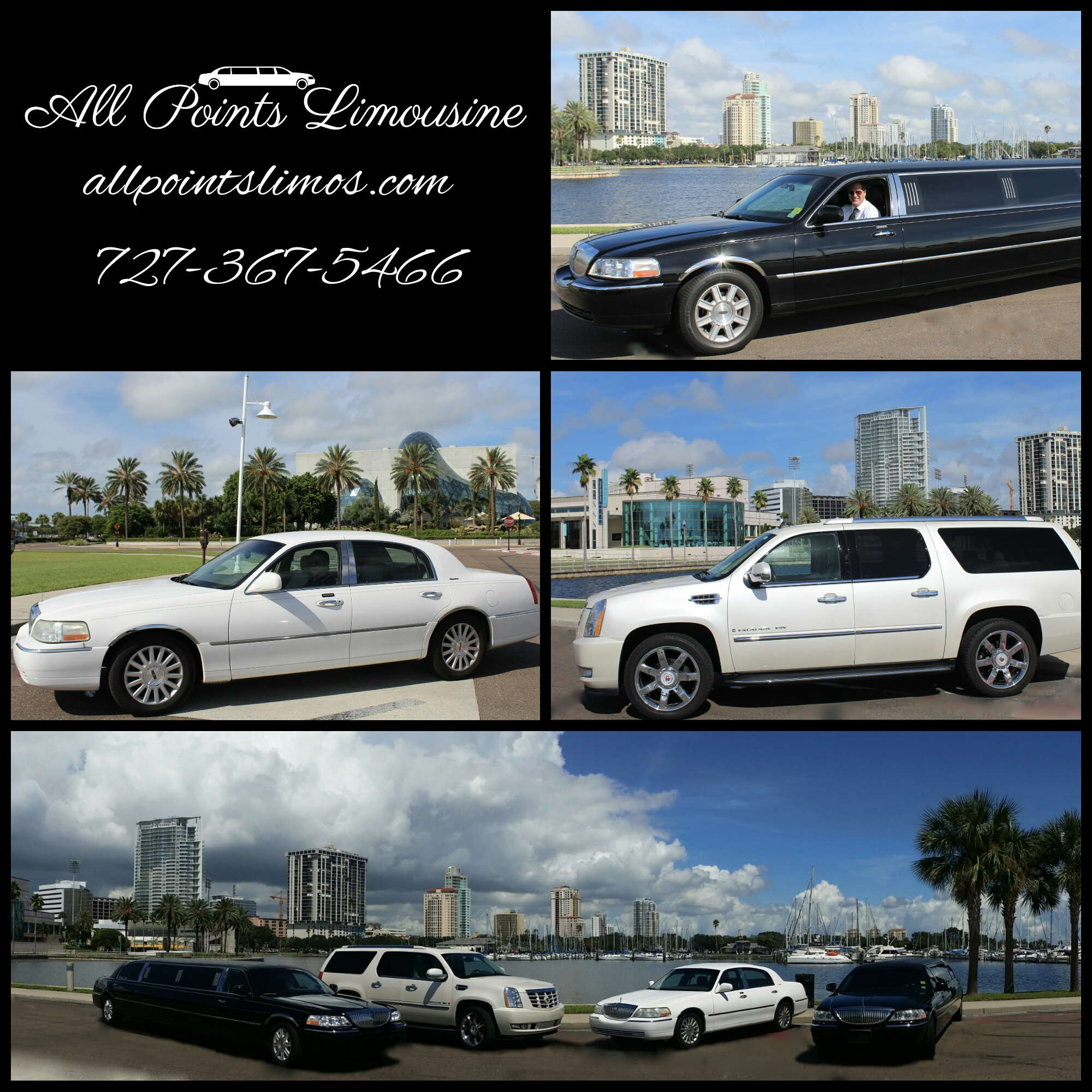 St. Petersburg limousine fleet