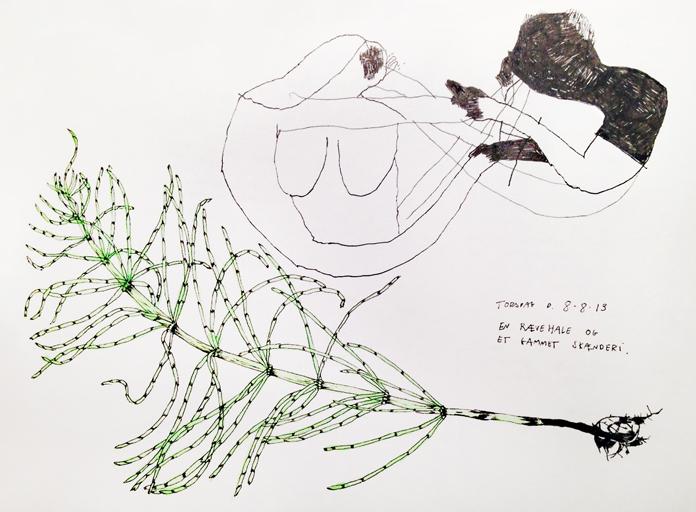 Illustrationer af Signe Parkins.