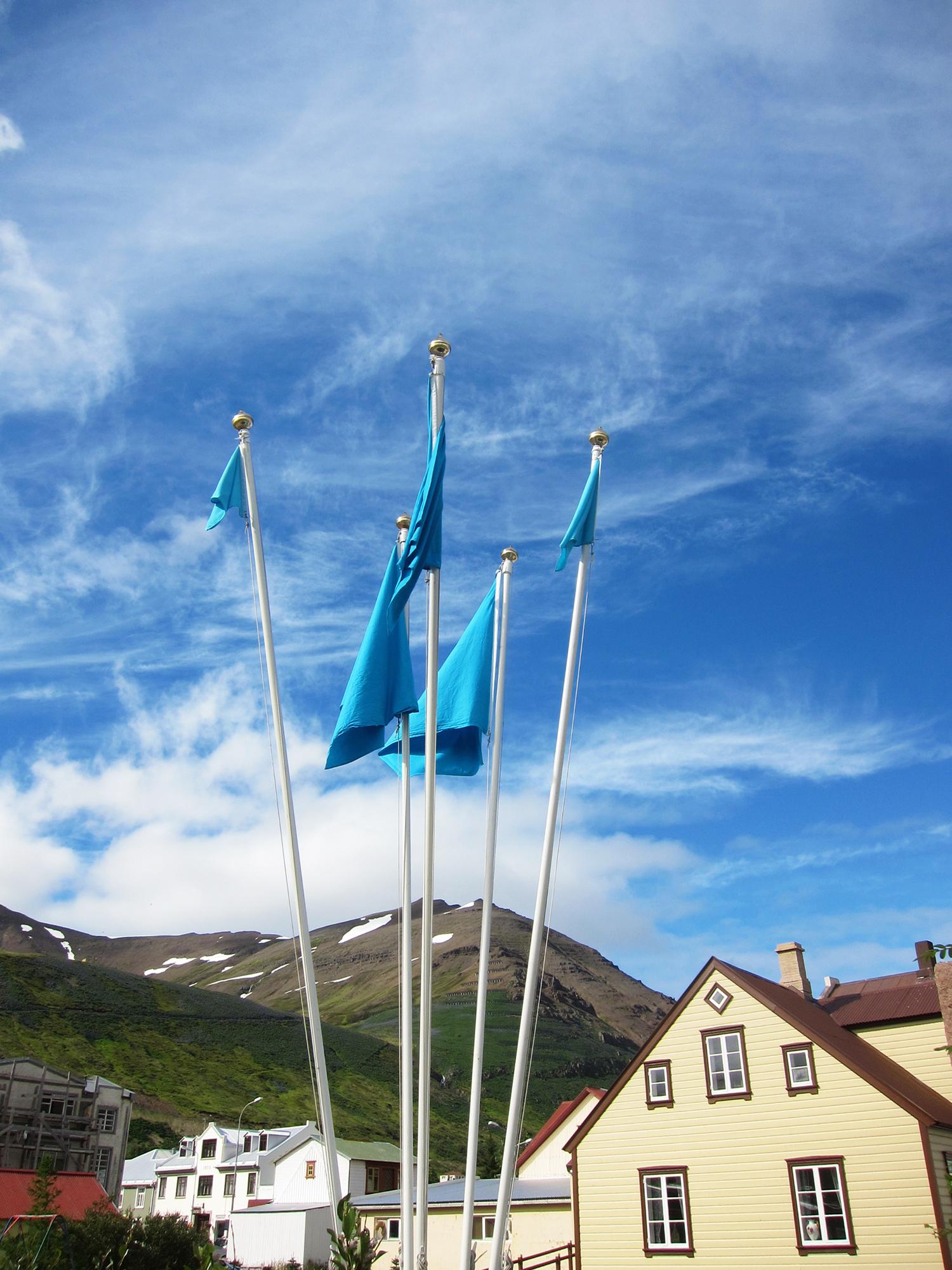 Flags (2013): En tværfaglig gruppe deltagere producerede 136 flag i forskellige størrelser – et til hver flagstang i byen. På REITIRs åbningsdag blev samtlige flag hejst på samme tid i en koordineret kæmpeperformance.