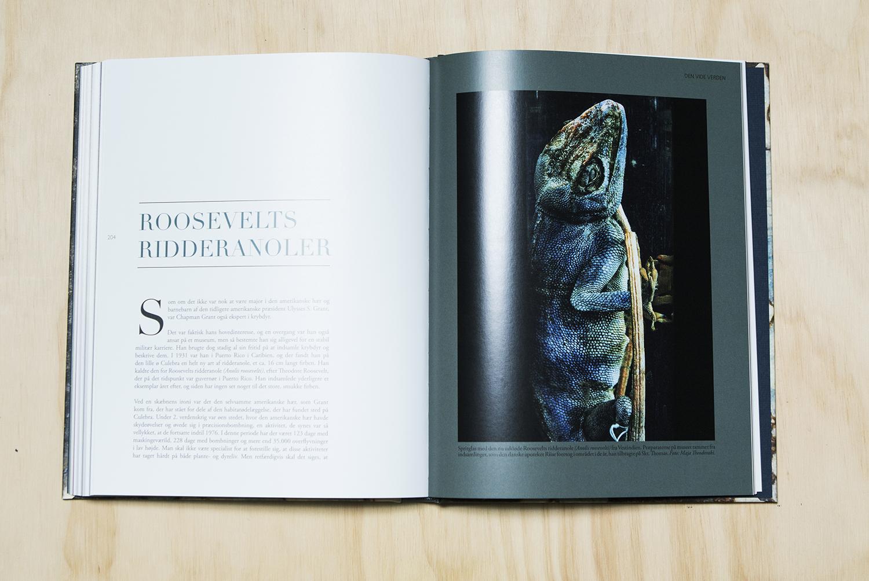 3Bøger-Agency.idoart.dk-042-1500.jpg