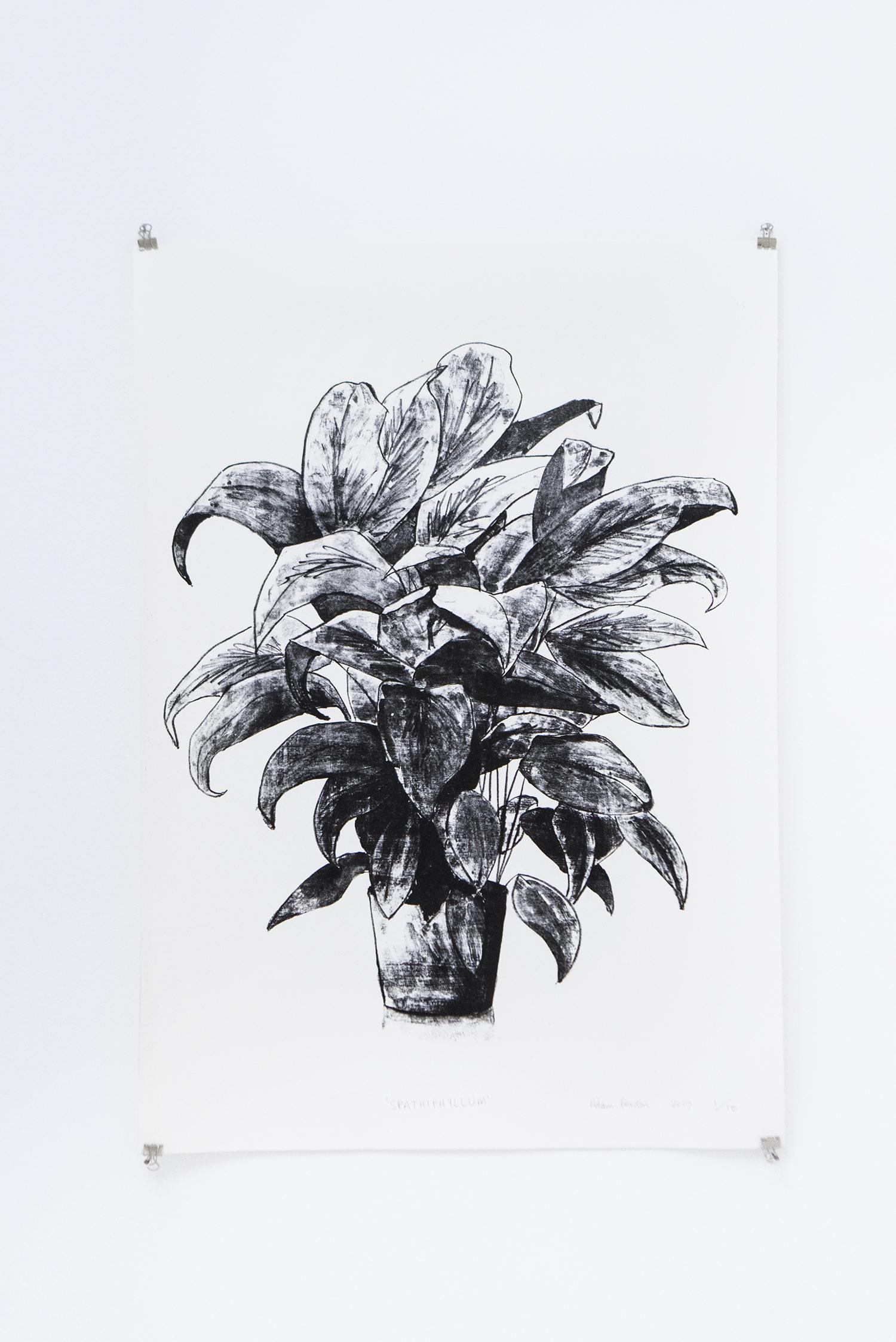 "Adam Fenton ""Spathiphyllum"", 2017 (litograph on paper, 64x44.5cm) | Foto © I DO ART Agency."
