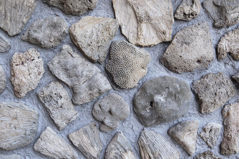Koraller på I Am Queen Marys sokkel. Photo © I DO ART Agency.