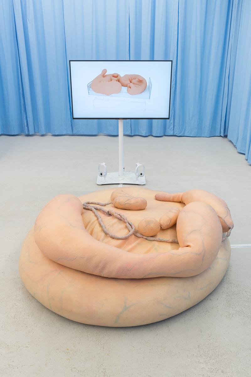 Stine Deja & Marie Munk, Synthetic Seduction. Installation view, Annka Kultys, 2018.