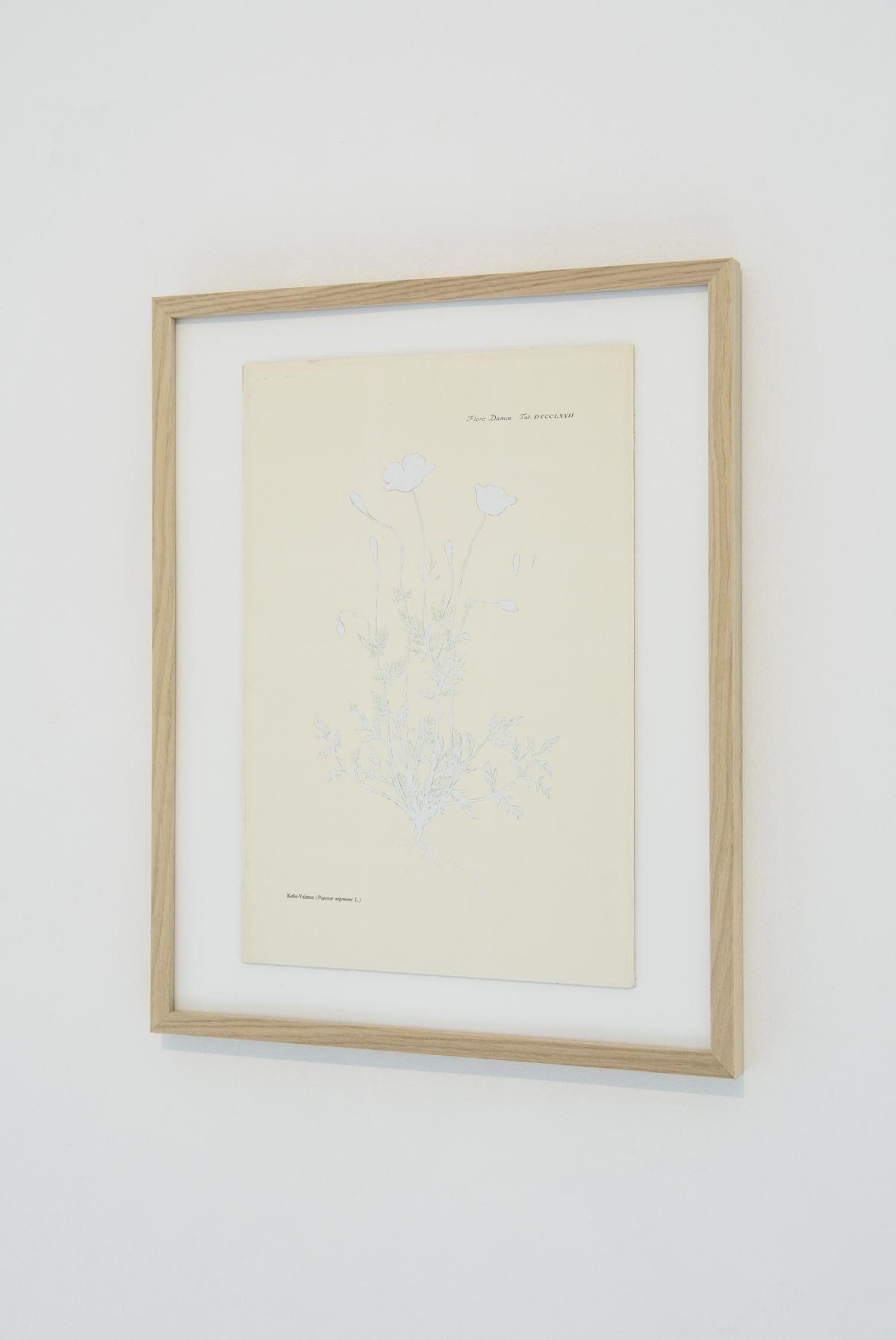 Peter Holst Henckel, Valmue. Foto © I DO ART Agency.
