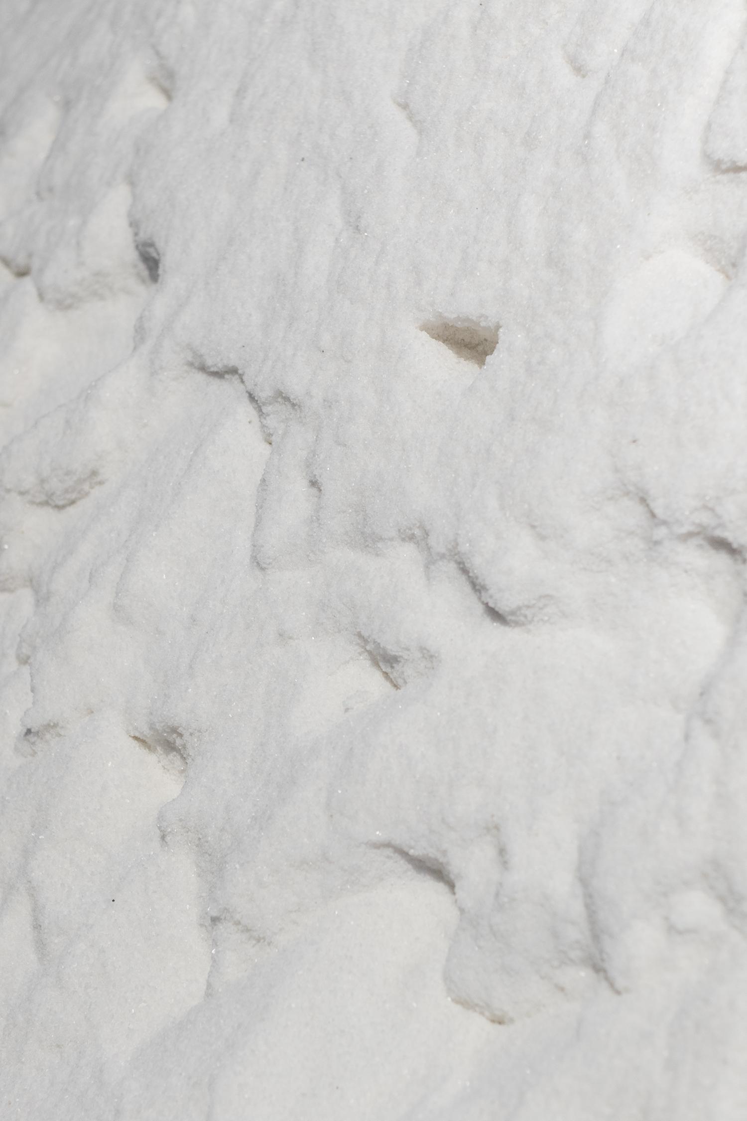 Patricia Kaersenhout, The Soul of Salt (detalje). Manifesta 12. Foto © I DO ART Agency.