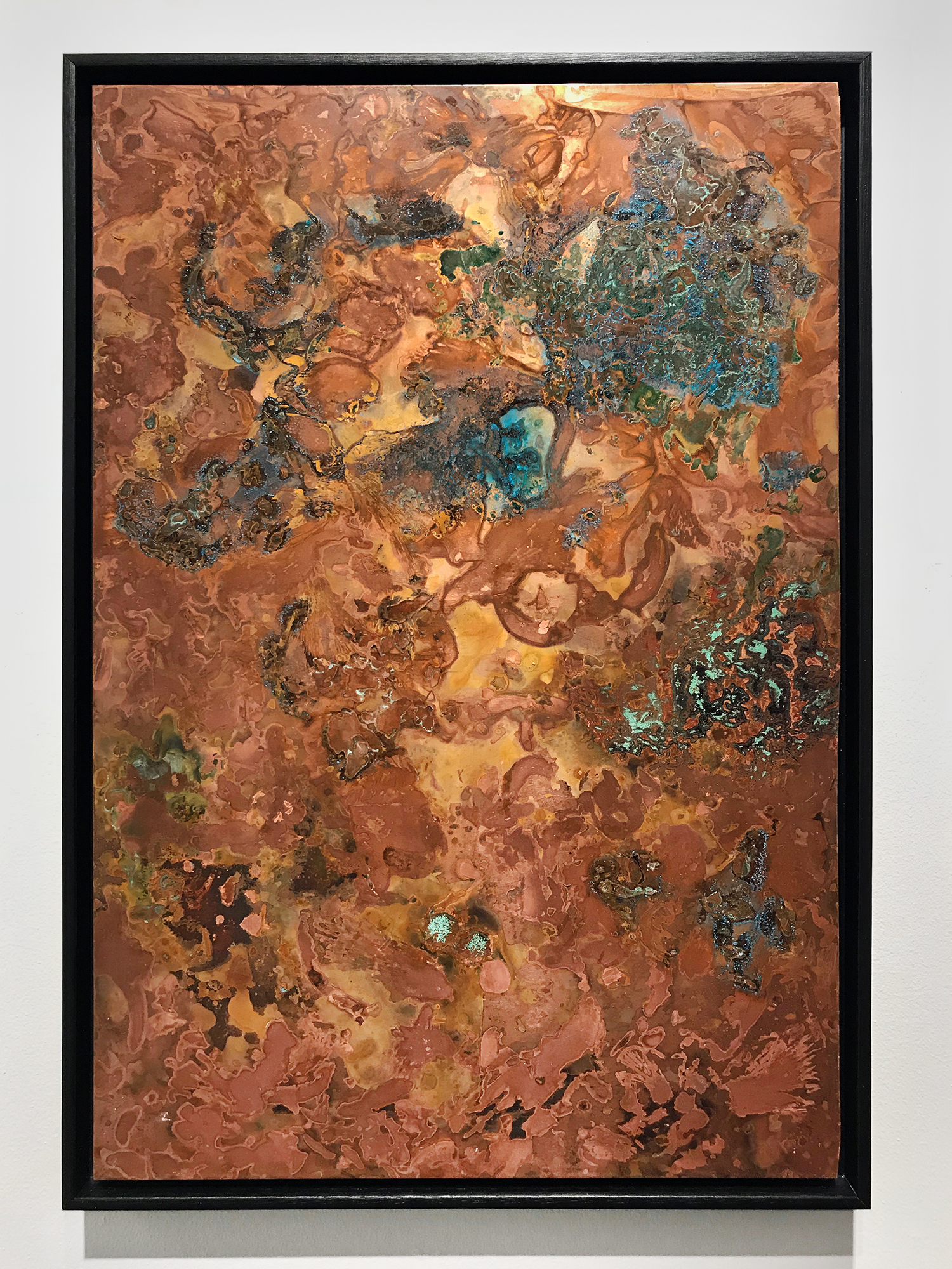 """Studio ThinkingHand """"Oxidized Metal Plate #1: Copper,� 2018 (Copper plate oxidized with various rotting mushrooms. 41(w) x 58(h)cm)."""