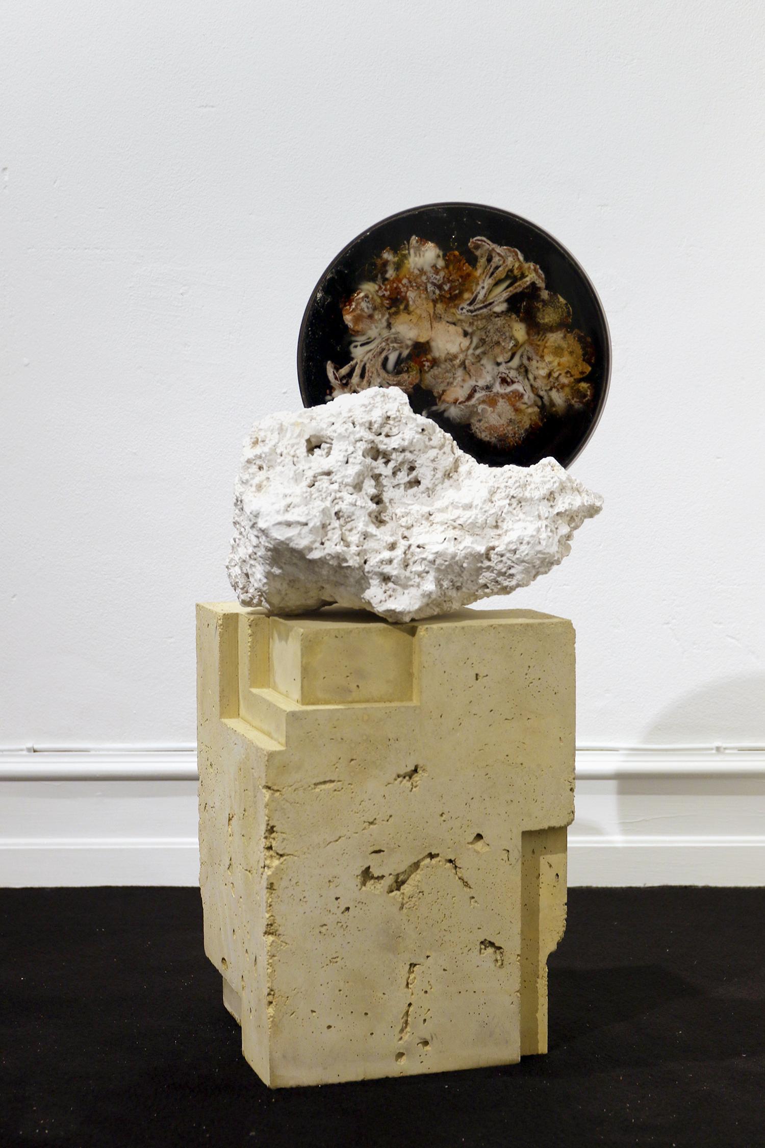 "Studio ThinkingHand ""Landscape Portrait #3,� 2018 (Epoxy resin, limestone fossil, pigment, flora, fungi. Foraged September 2017 from Kongelunden, DK. 38(w) x 38(h) x 22(d) cm)."
