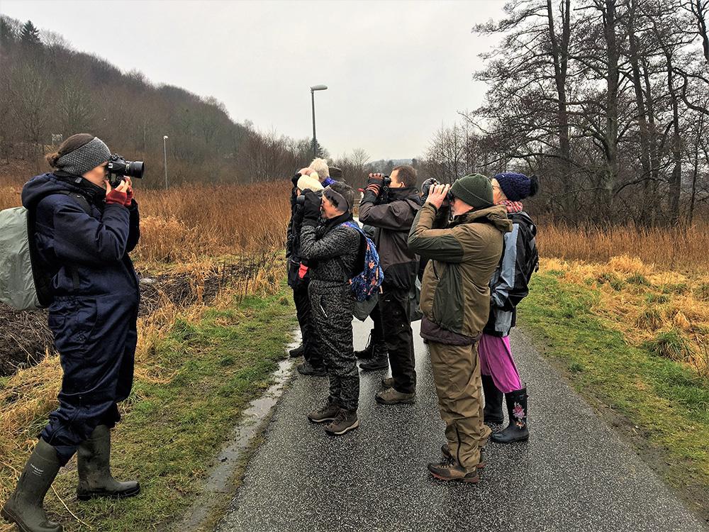 Kunstner Sofie Amalie Klougart (tv) på tur med Dansk Ornitologisk forening, Sydøstjylland. Foto: VejleMuseerne.