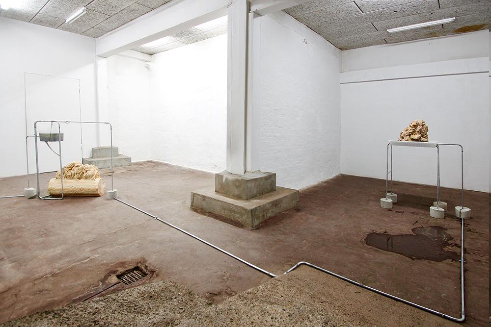Nina Nowak: 'Circadian Rhythms', 2019. Installation view. Photo: Nina Nowak.