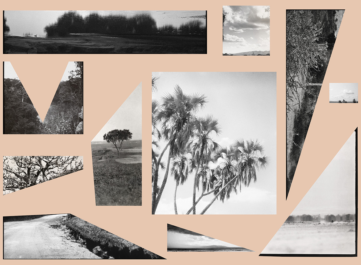 "Bettina Camilla Vestergaard ""Landscape Study Kenya.�"