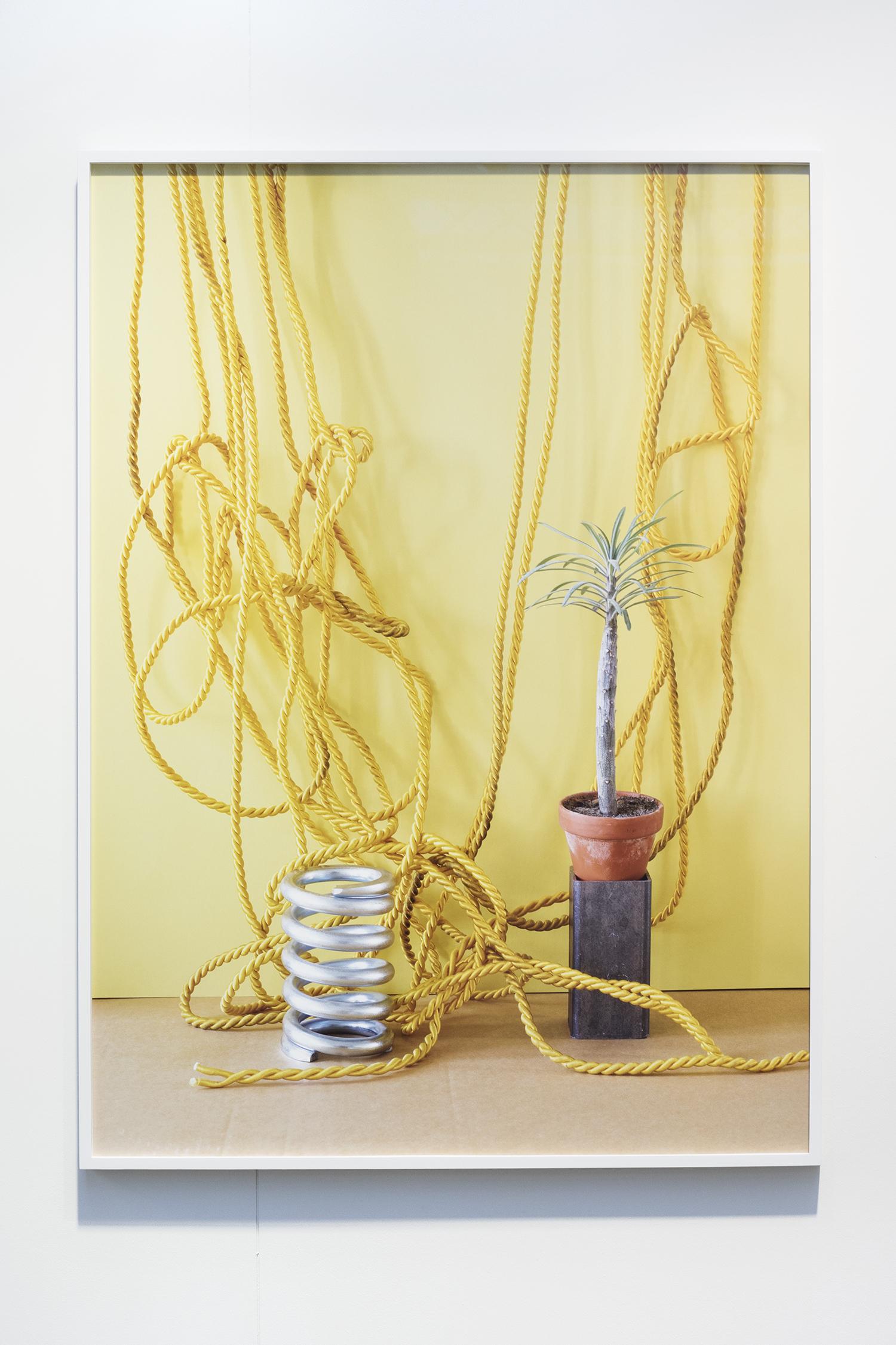 König Galerie: Annette Kelm. Foto © I DO ART Agency.