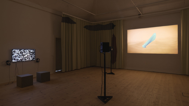 Galleri 1, installation view. Til venstre: OS af Piscine (Jens Settergren, Mark Tholander & Anna Ørberg). Til højre: ALVA II af Sophia Ioannou Gjerding & Xenia Xamanek. Foto: Mikkel Kaldal.