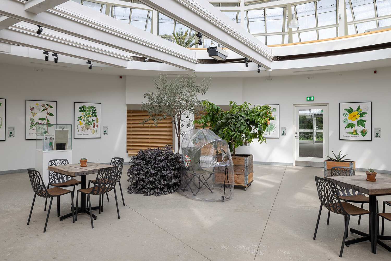 Maximilian Schmoetzer, Me and you (2018). Installation view i Væksthusene i Botanisk Have. Foto: Mikkel Kaldal.