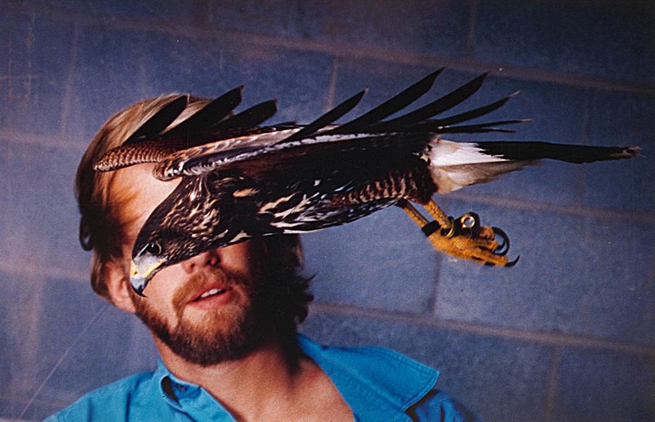 IMG0002A Hawk in wndtunnel psd.jpg