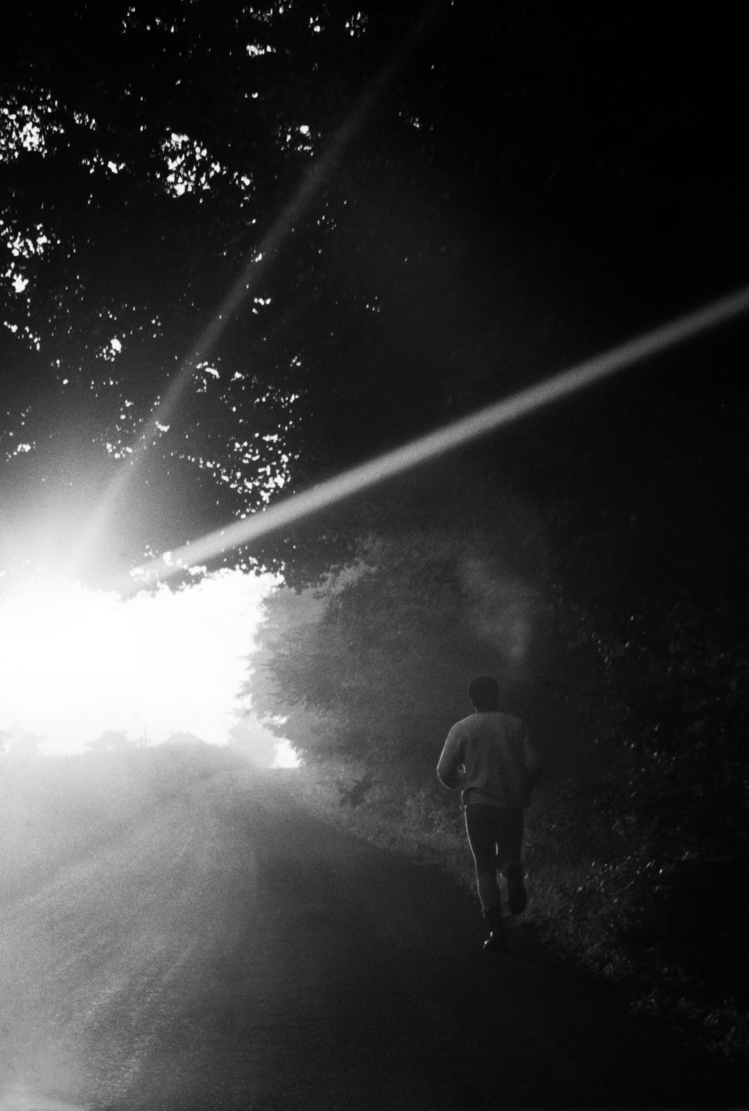 Dawn Run