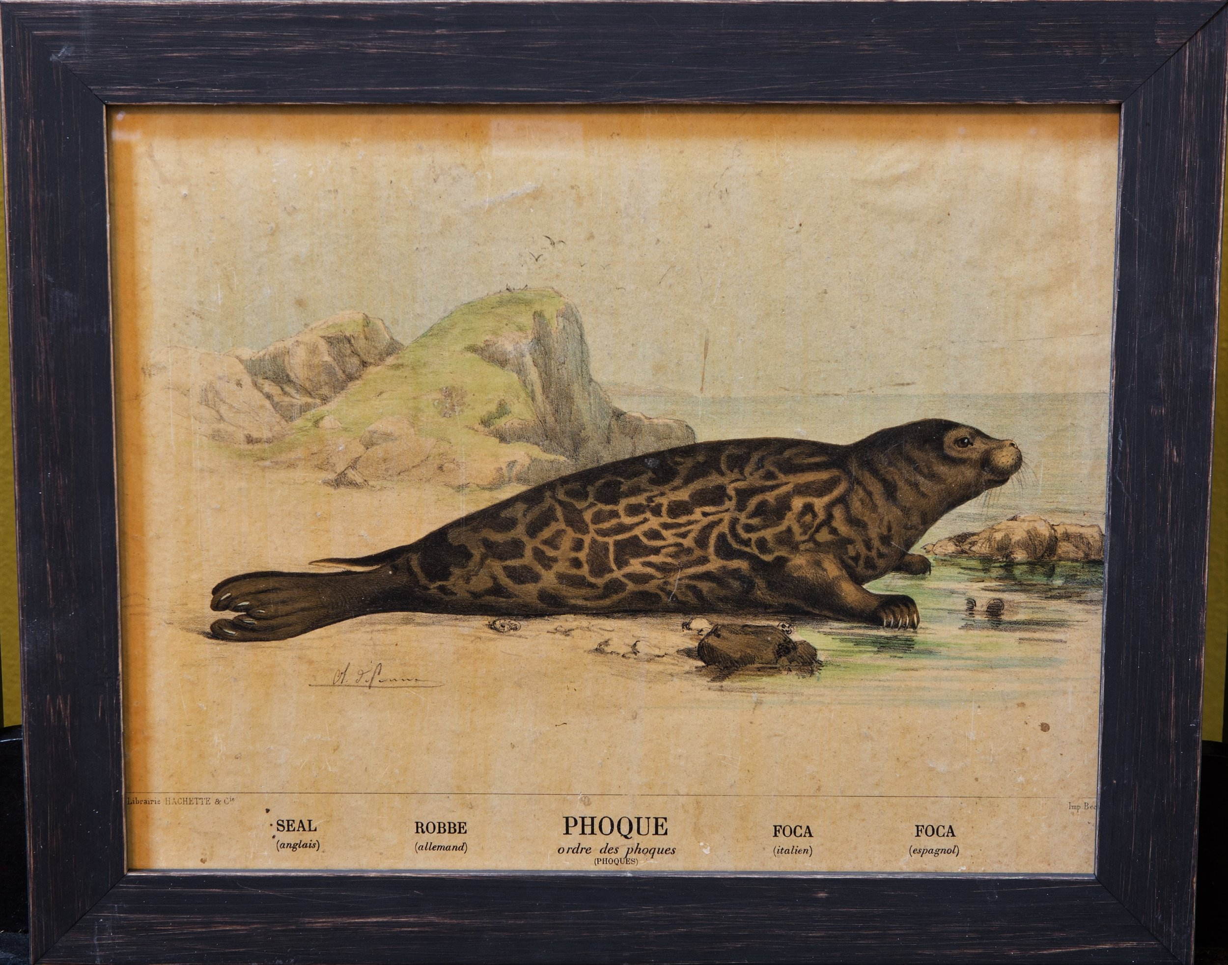 Antique Seal Print