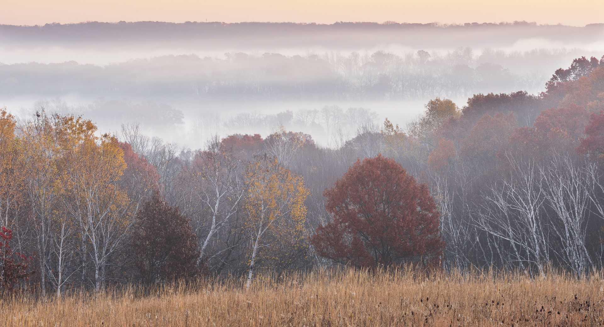 Morning fog shrouds the St. Croix river valley