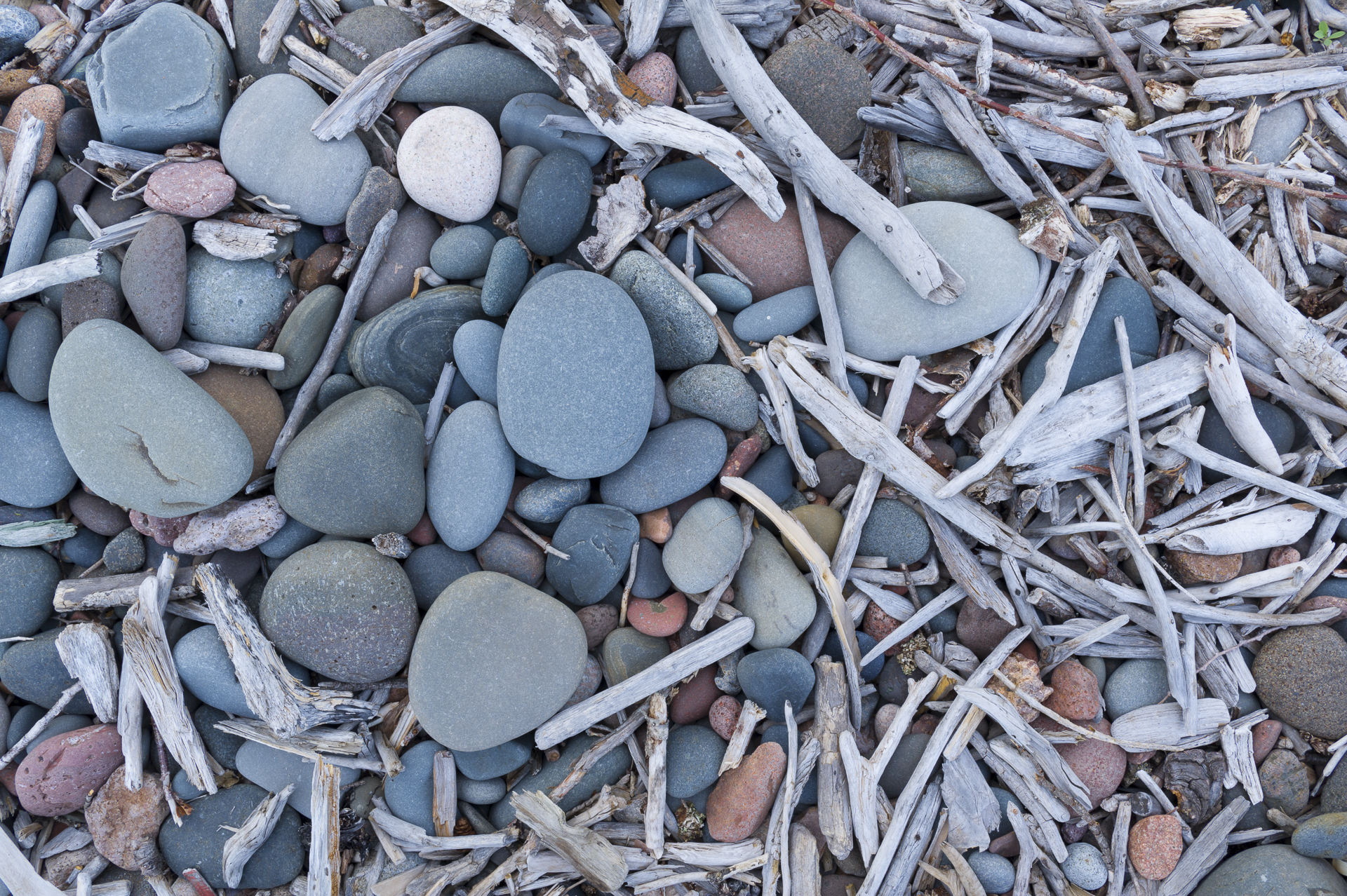 Beach pebbles and driftwood: Cook County, MN