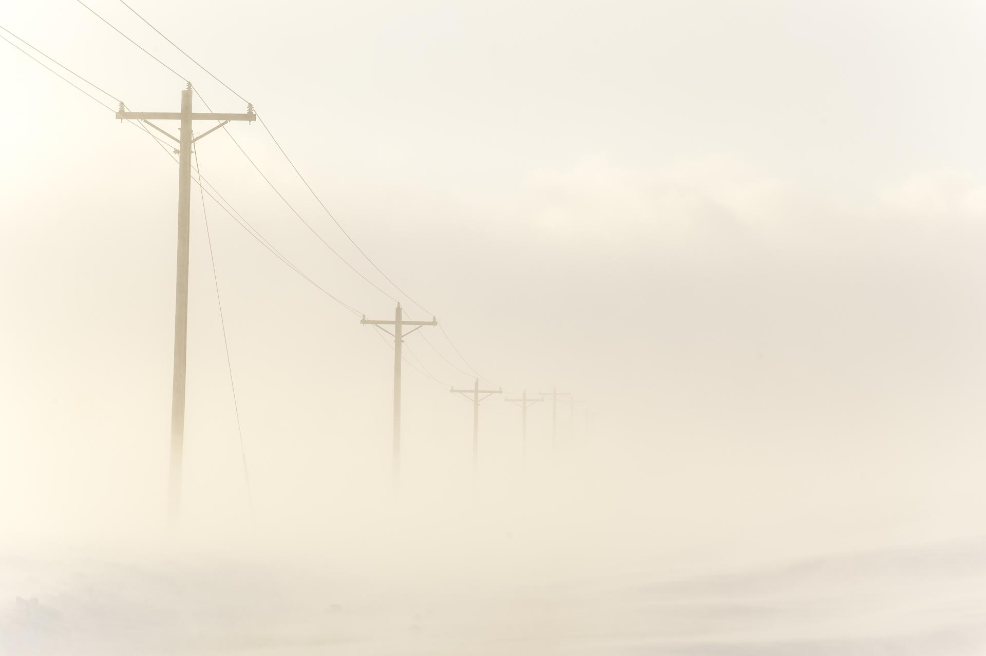 Whiteout! Dakota County, January 26, 2014.