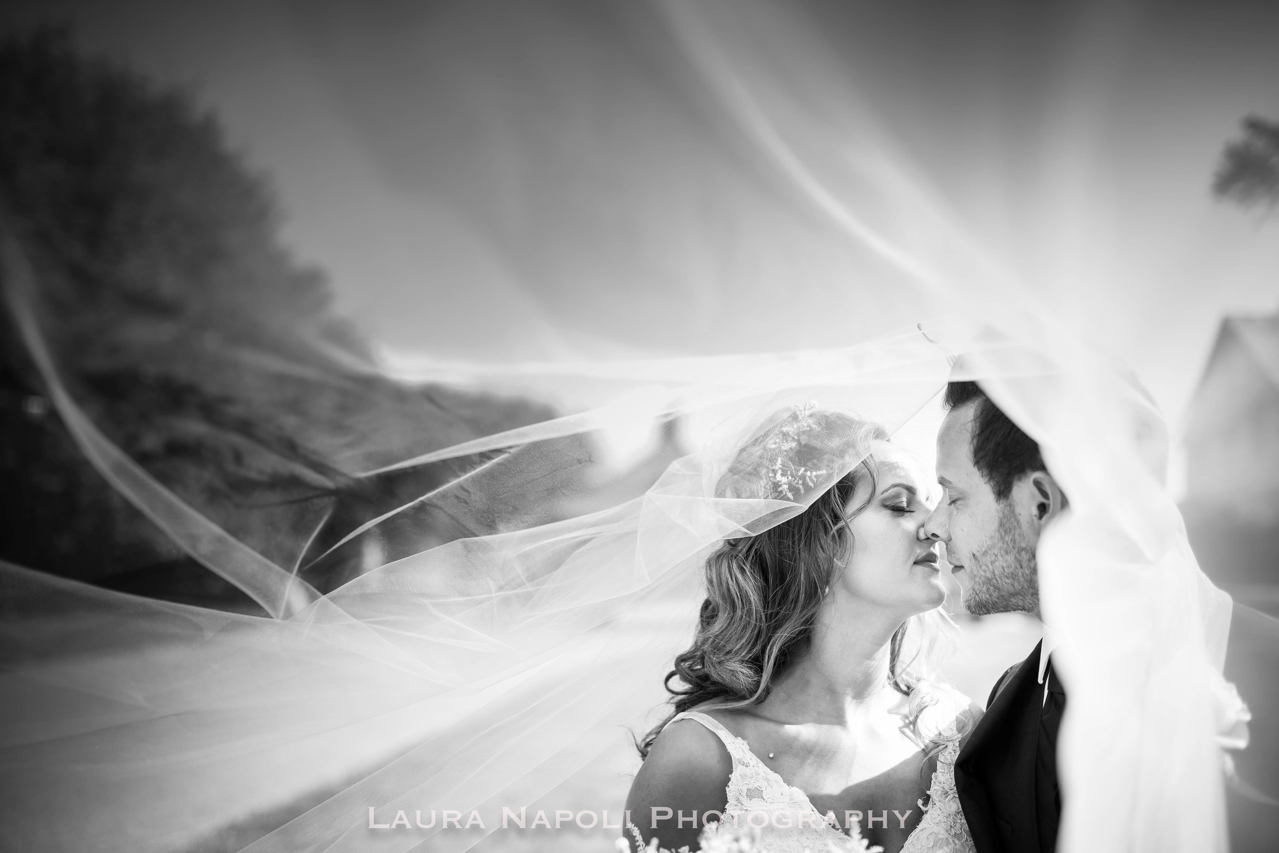 cairnwoodestateweddingsalvagedrentalsbrynathenpaweddingphotographer-12.jpg