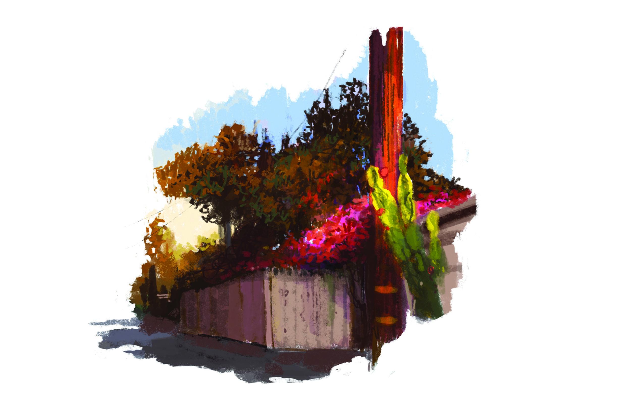 summer Pasadena ally.jpg