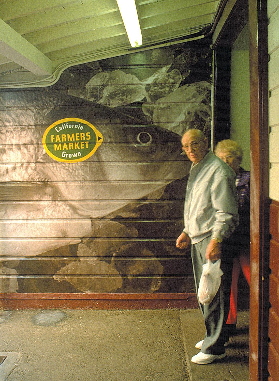 fish at gate_web.jpg