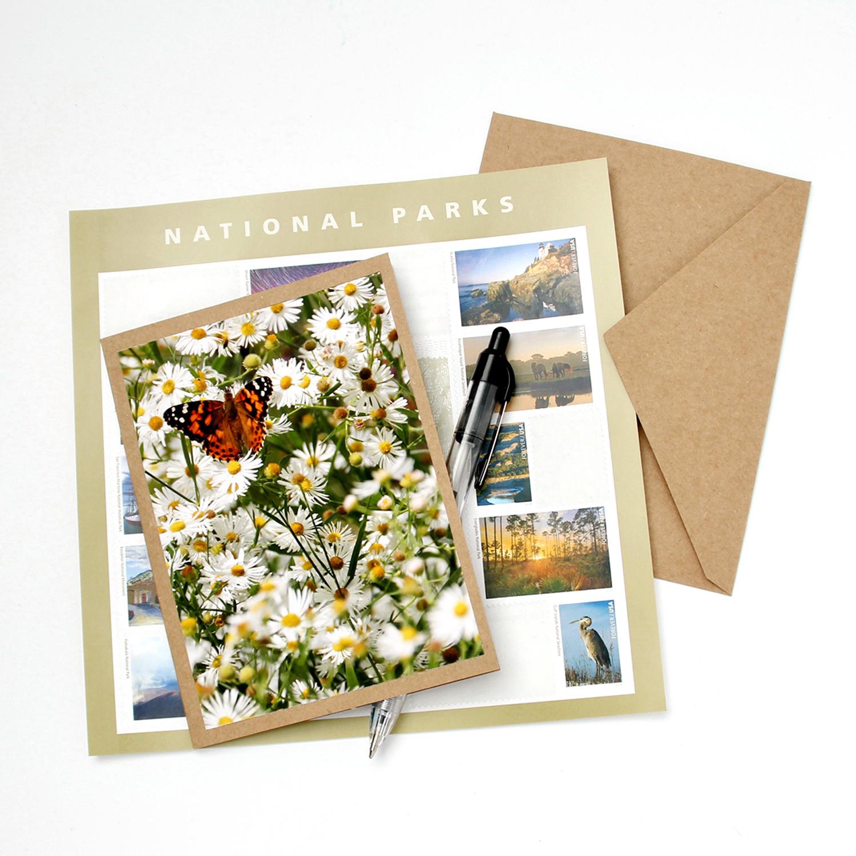 Note Card (Boxed Set) - Les Fleurs