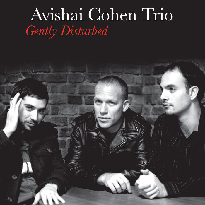 AVISHAI COHEN TRIO / GENTLY DISTURBED